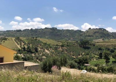 Krajobrazy prezentujące się na terenie ośrodka