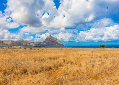 Krajobraz złotych traw z morzem i górami w oddali