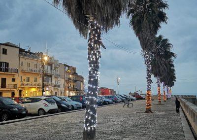 Ozdobione palmy