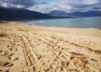 Plaża z krajobrazem