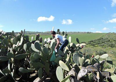 Paweł Durakiewicz na kaktusach