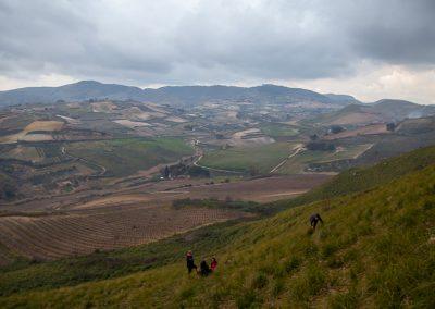 Góry i pola