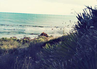 Inne ujęcie florystycznego nabrzeża